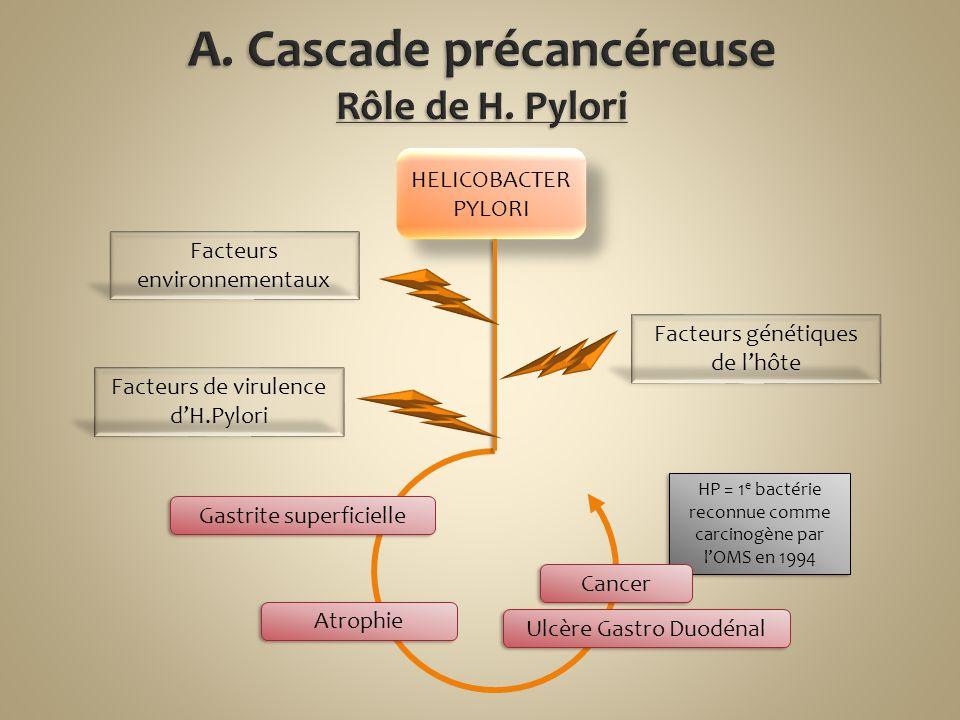 HP = 1 e bactérie reconnue comme carcinogène par lOMS en 1994 HELICOBACTER PYLORI Ulcère Gastro Duodénal Cancer Facteurs génétiques de lhôte Facteurs