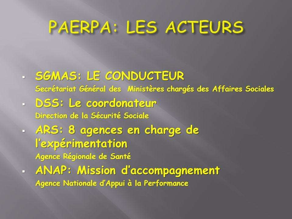 SGMAS: LE CONDUCTEUR SGMAS: LE CONDUCTEUR Secrétariat Général des Ministères chargés des Affaires Sociales DSS: Le coordonateur DSS: Le coordonateur D