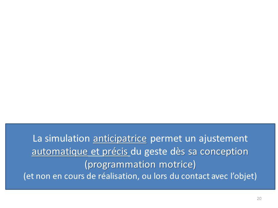 20 anticipatrice automatiqueprécisès sa conception (programmation motrice) La simulation anticipatrice permet un ajustement automatique et précis du g