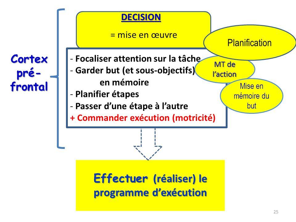 - Focaliser attention sur la tâche - Garder but (et sous-objectifs) en mémoire - Planifier étapes - Passer dune étape à lautre + Commander exécution (