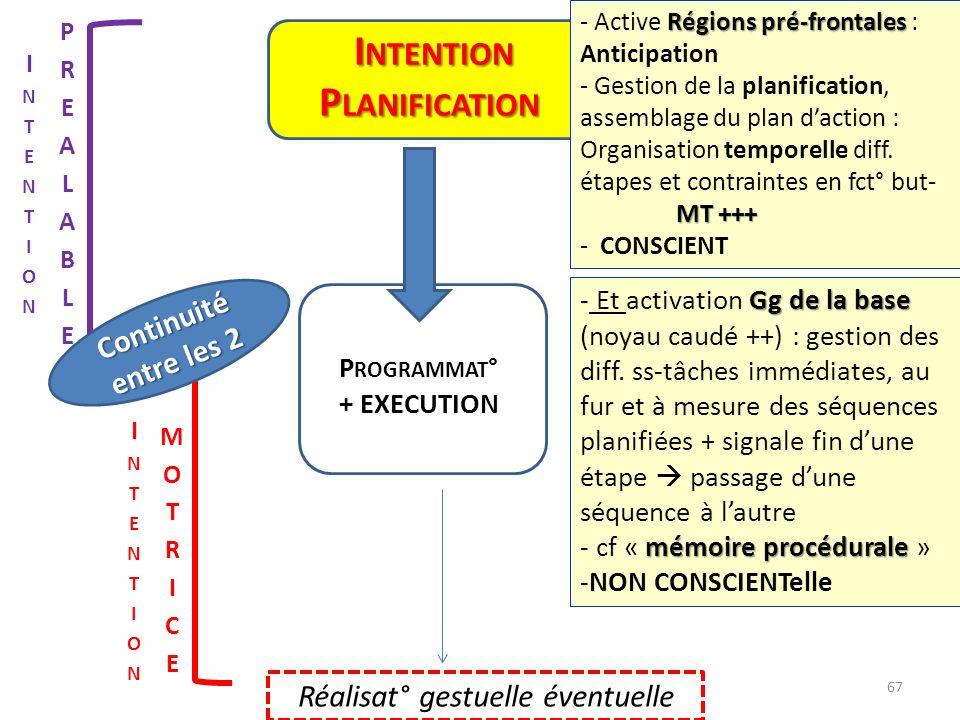 P ROGRAMMAT ° + EXECUTION Réalisat° gestuelle éventuelle I NTENTION I NTENTION P LANIFICATION Continuité entre les 2 Régions pré-frontales - Active Ré