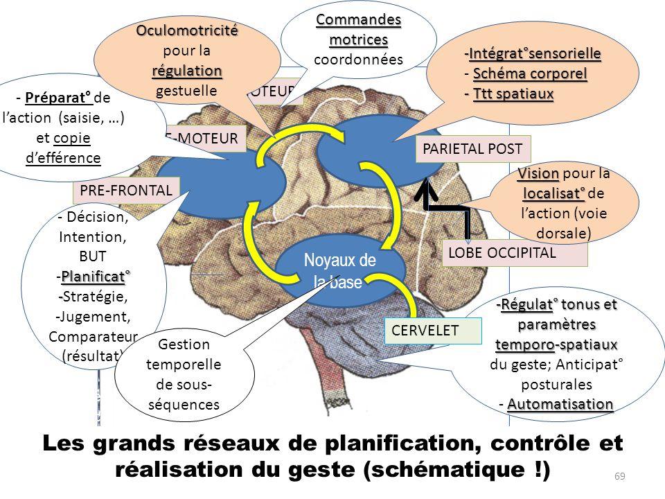 Noyaux de la base PARIETAL POST PRE-FRONTAL Les grands réseaux de planification, contrôle et réalisation du geste (schématique !) LOBE OCCIPITAL 6 Pla