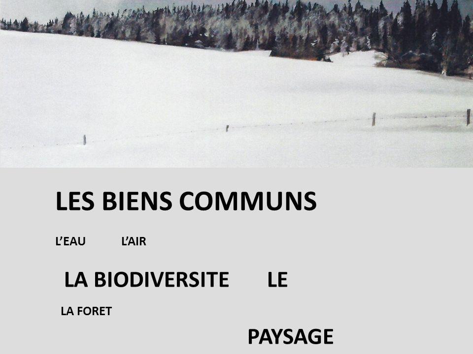 LES BIENS COMMUNS LEAU LAIR LA BIODIVERSITE LE LA FORET PAYSAGE