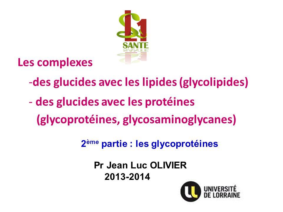 Pr Jean Luc OLIVIER 2013-2014 Les complexes -des glucides avec les lipides (glycolipides) - des glucides avec les protéines (glycoprotéines, glycosami