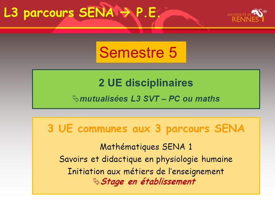 Semestre 5 2 UE disciplinaires mutualisées L3 SVT – PC ou maths 3 UE communes aux 3 parcours SENA Mathématiques SENA 1 Savoirs et didactique en physiologie humaine Initiation aux métiers de lenseignement Stage en établissement L3 parcours SENA P.E.
