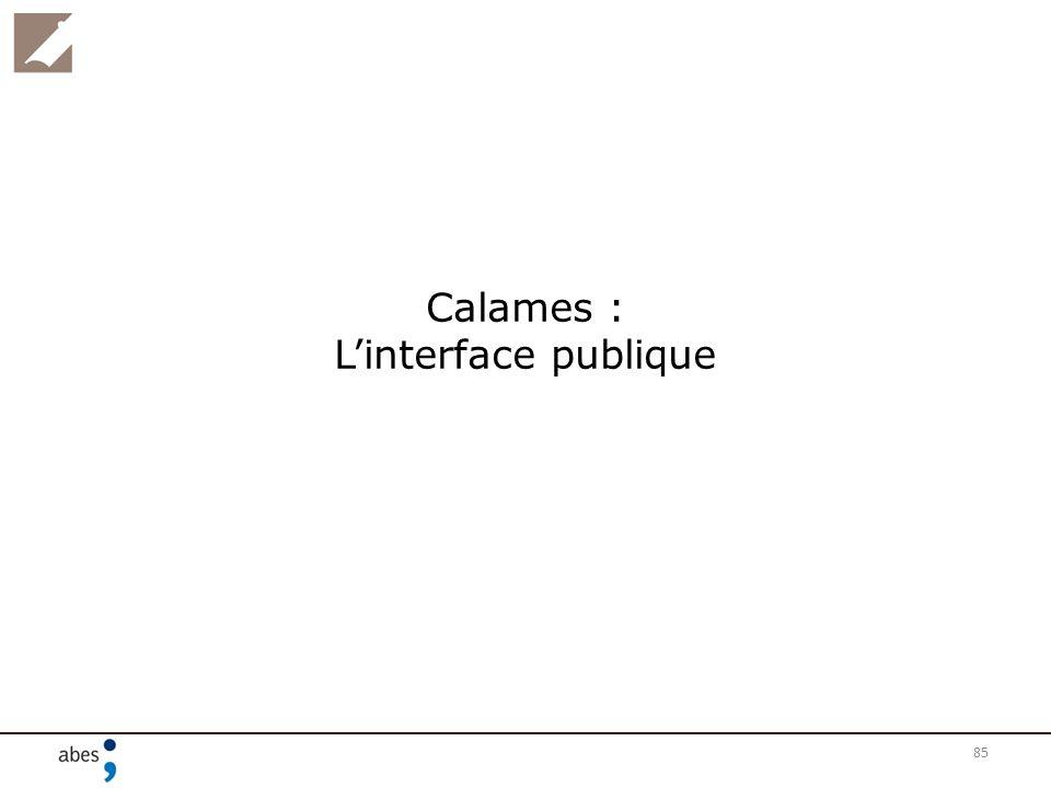 85 Calames : Linterface publique