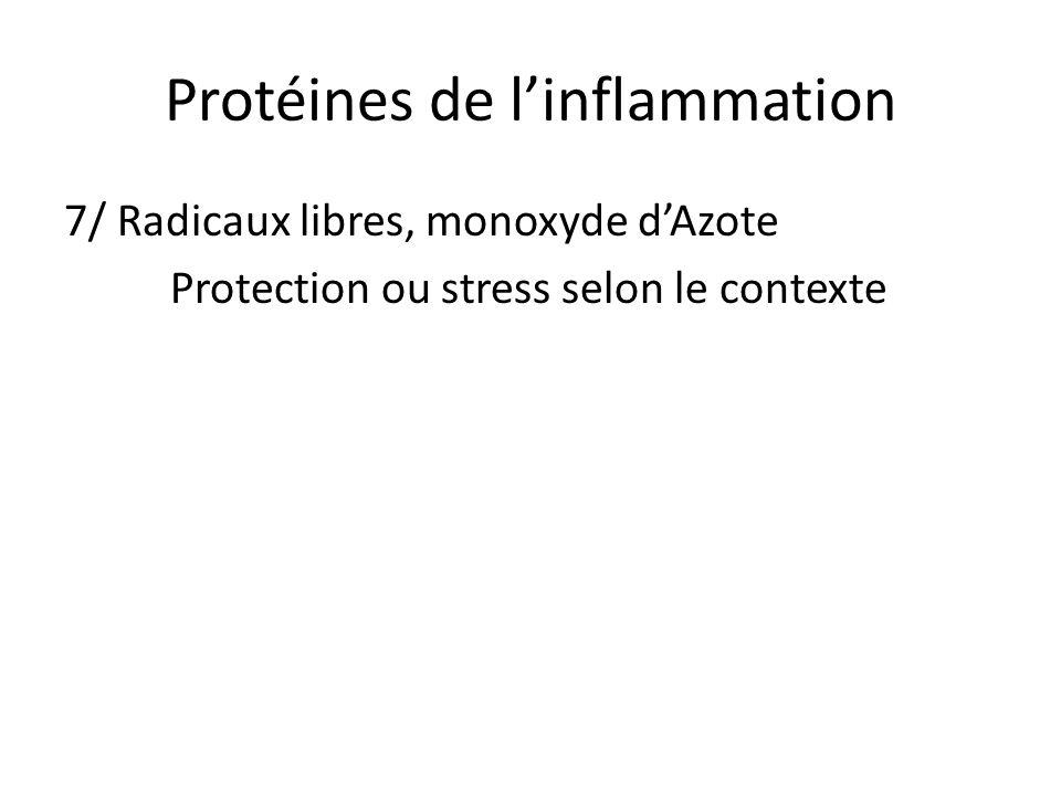 Protéines de linflammation 7/ Radicaux libres, monoxyde dAzote Protection ou stress selon le contexte