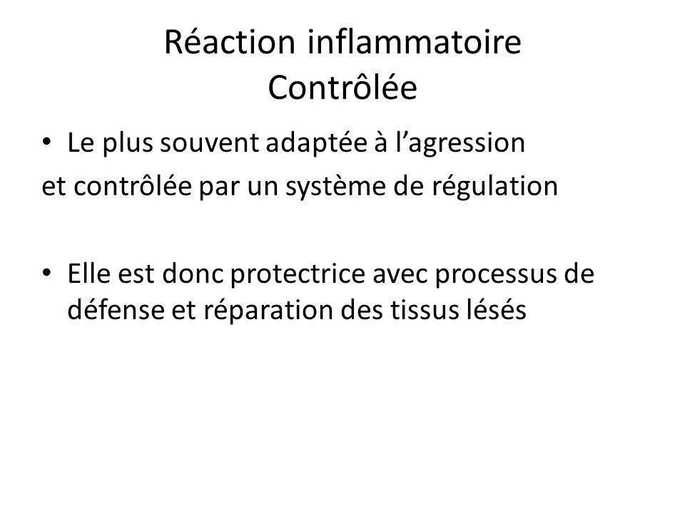 Réaction inflammatoire Contrôlée Le plus souvent adaptée à lagression et contrôlée par un système de régulation Elle est donc protectrice avec process
