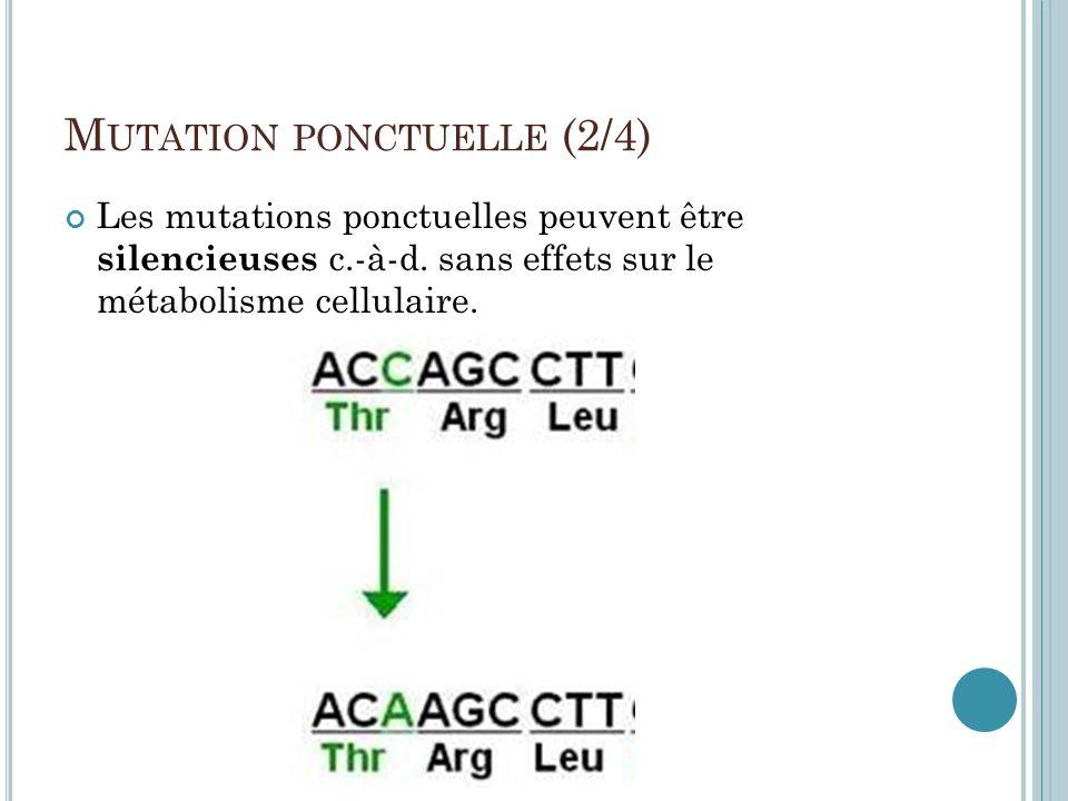 M UTATION PONCTUELLE (2/4) Les mutations ponctuelles peuvent être silencieuses c.-à-d. sans effets sur le métabolisme cellulaire.