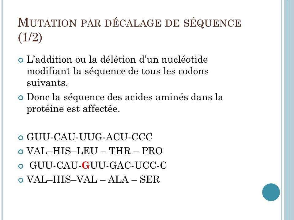 M UTATION PAR DÉCALAGE DE SÉQUENCE (1/2) Laddition ou la délétion dun nucléotide modifiant la séquence de tous les codons suivants. Donc la séquence d
