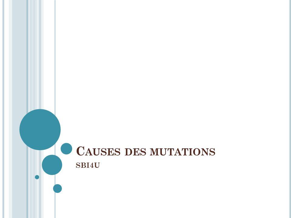 C AUSES DES MUTATIONS SBI4U