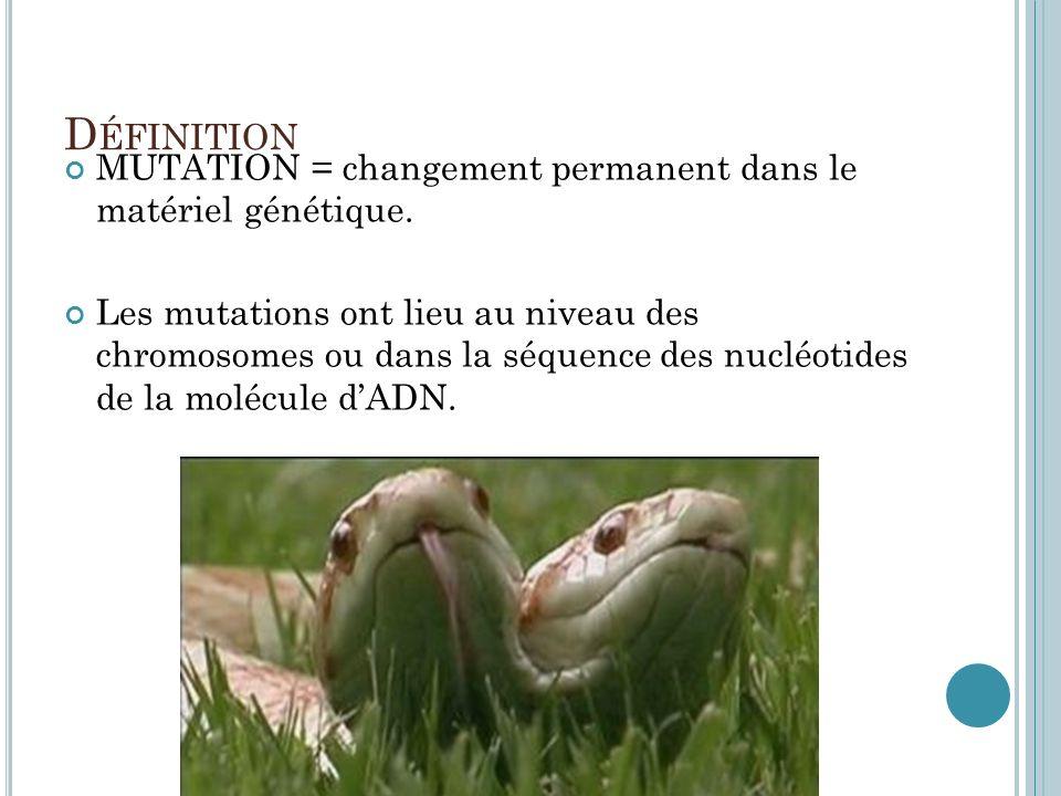 D ÉFINITION MUTATION = changement permanent dans le matériel génétique. Les mutations ont lieu au niveau des chromosomes ou dans la séquence des nuclé