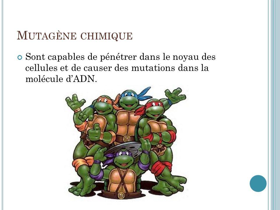 M UTAGÈNE CHIMIQUE Sont capables de pénétrer dans le noyau des cellules et de causer des mutations dans la molécule dADN.