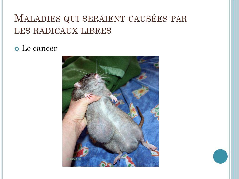 M ALADIES QUI SERAIENT CAUSÉES PAR LES RADICAUX LIBRES Le cancer