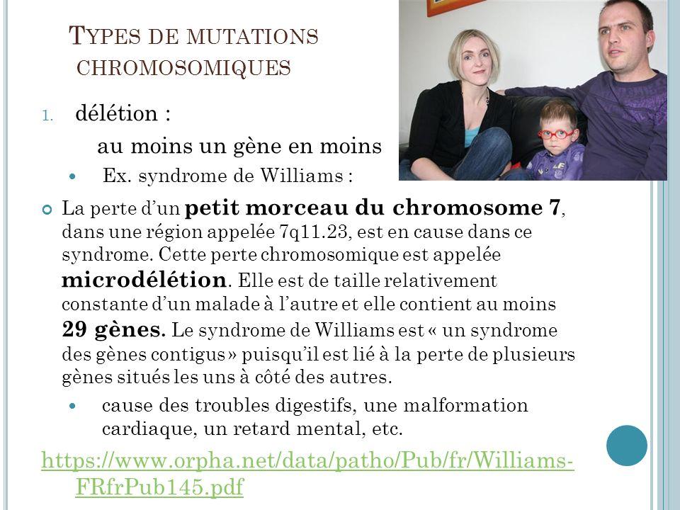 T YPES DE MUTATIONS CHROMOSOMIQUES 1. délétion : au moins un gène en moins Ex. syndrome de Williams : La perte dun petit morceau du chromosome 7, dans