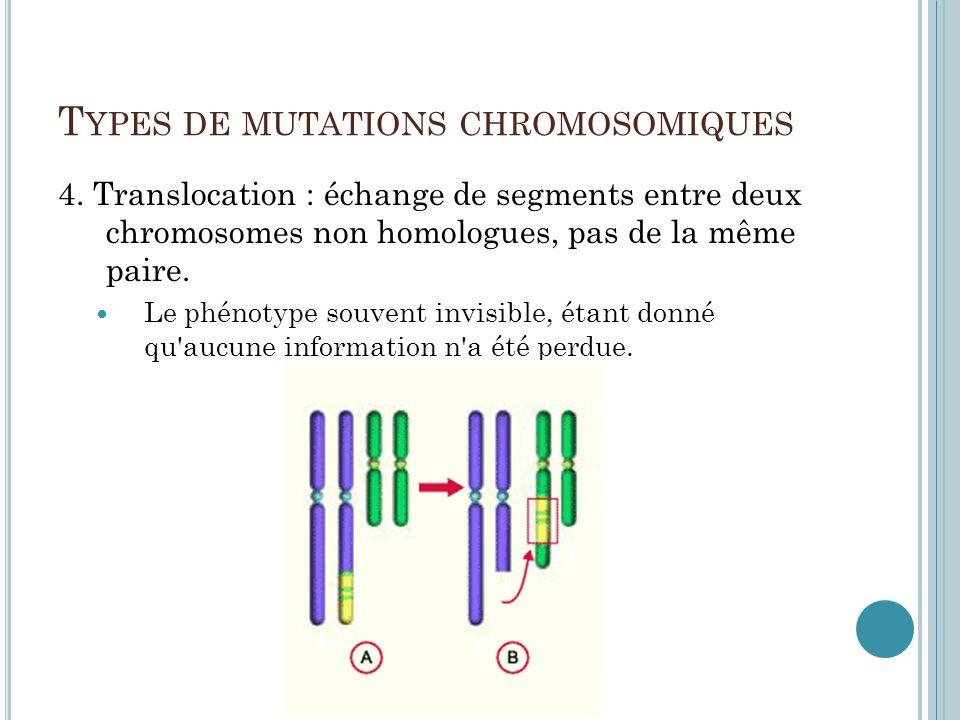 T YPES DE MUTATIONS CHROMOSOMIQUES 4. Translocation : échange de segments entre deux chromosomes non homologues, pas de la même paire. Le phénotype so