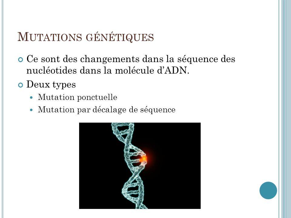M UTATIONS GÉNÉTIQUES Ce sont des changements dans la séquence des nucléotides dans la molécule dADN. Deux types Mutation ponctuelle Mutation par déca