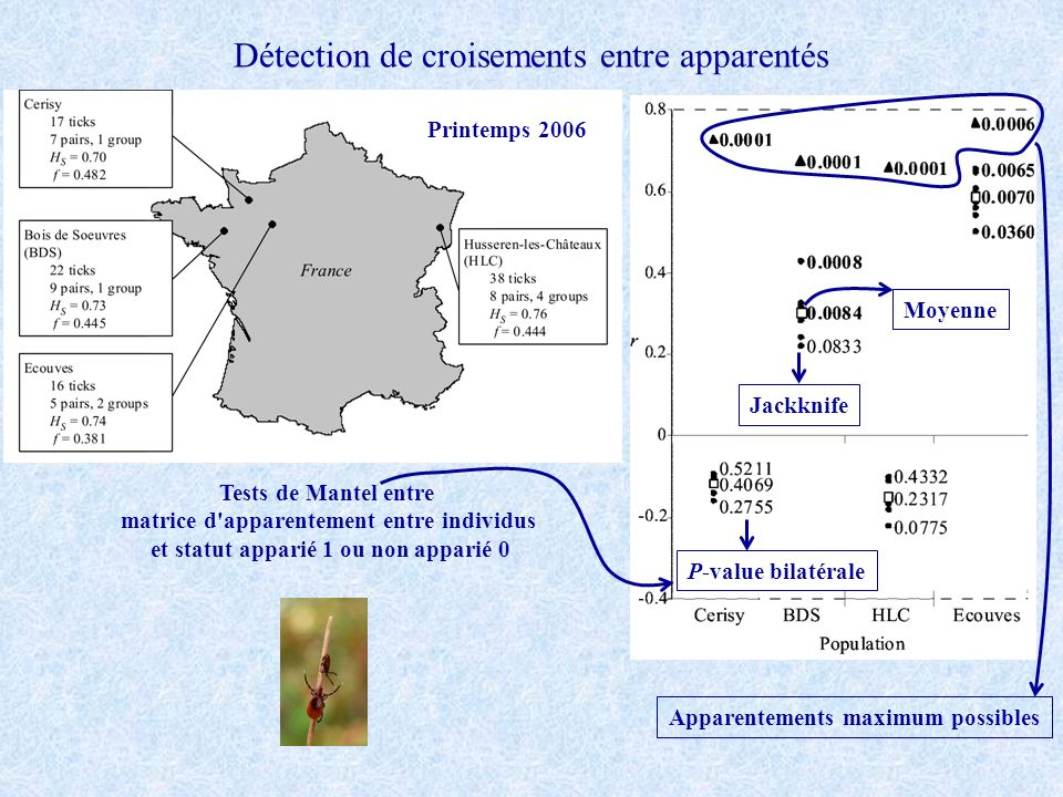 Détection de croisements entre apparentés Tests de Mantel entre matrice d apparentement entre individus et statut apparié 1 ou non apparié 0 Printemps 2006 Apparentements maximum possibles Moyenne Jackknife P-value bilatérale