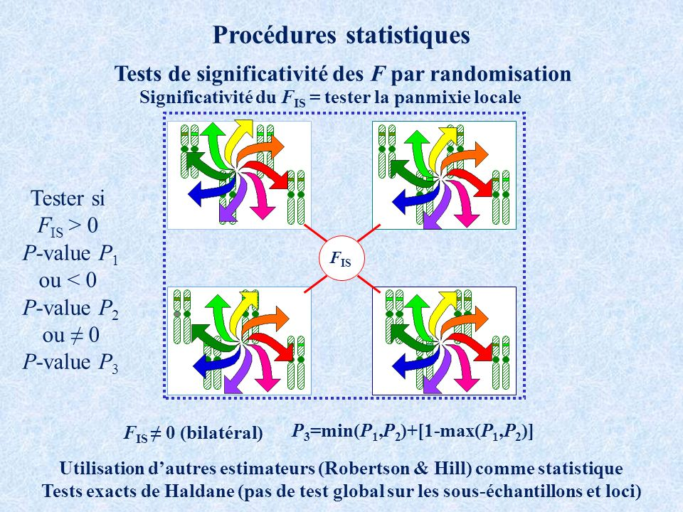 Procédures statistiques Tests de significativité des F par randomisation F IS Utilisation dautres estimateurs (Robertson & Hill) comme statistique Tests exacts de Haldane (pas de test global sur les sous-échantillons et loci) Tester si F IS > 0 P-value P 1 ou < 0 P-value P 2 ou 0 P-value P 3 F IS 0 (bilatéral) P 3 =min(P 1,P 2 )+[1-max(P 1,P 2 )] Significativité du F IS = tester la panmixie locale