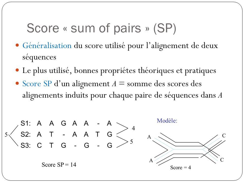Score « sum of pairs » (SP) Généralisation du score utilisé pour lalignement de deux séquences Le plus utilisé, bonnes propriétes théoriques et pratiq