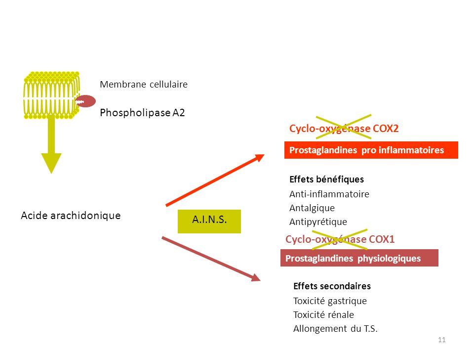 Acide arachidonique Cyclo-oxygénase COX1 Prostaglandines physiologiques Effets bénéfiques Anti-inflammatoire Antalgique Antipyrétique Cyclo-oxygénase