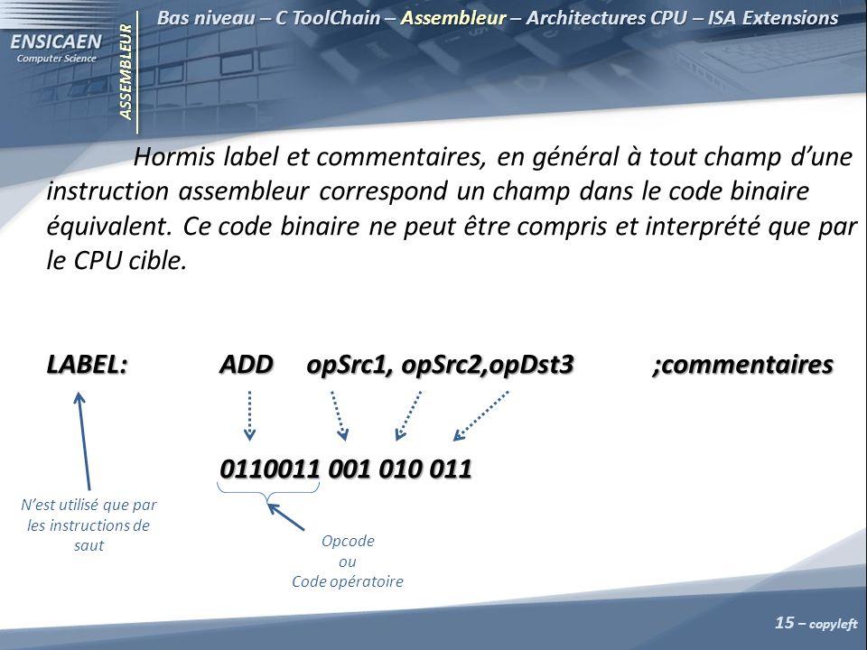 ASSEMBLEUR Bas niveau – C ToolChain – Assembleur – Architectures CPU – ISA Extensions Hormis label et commentaires, en général à tout champ dune instruction assembleur correspond un champ dans le code binaire équivalent.