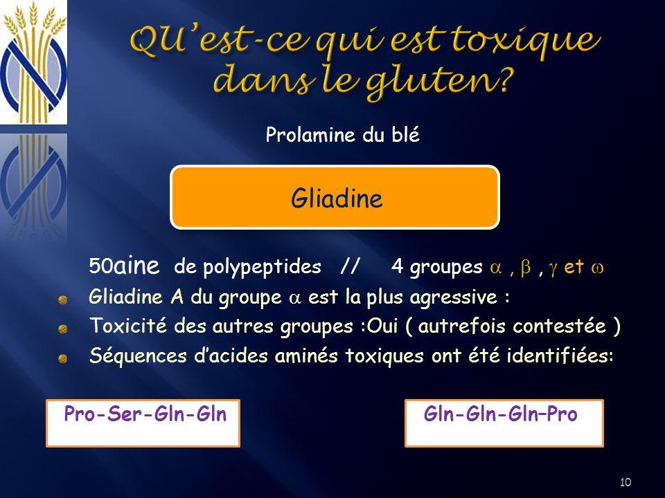 Prolamine du blé Gliadine 50 aine de polypeptides // 4 groupes,, et Gliadine A du groupe est la plus agressive : Toxicité des autres groupes :Oui ( au