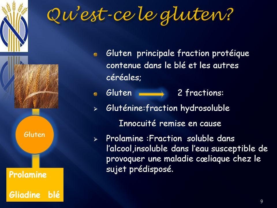 9 Gluten principale fraction protéique contenue dans le blé et les autres céréales; Gluten 2 fractions: Gluténine:fraction hydrosoluble Innocuité remi
