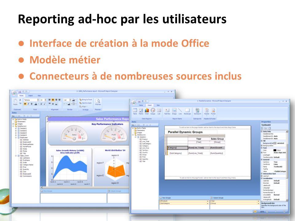 Interface de création à la mode Office Modèle métier Connecteurs à de nombreuses sources inclus Reporting ad-hoc par les utilisateurs
