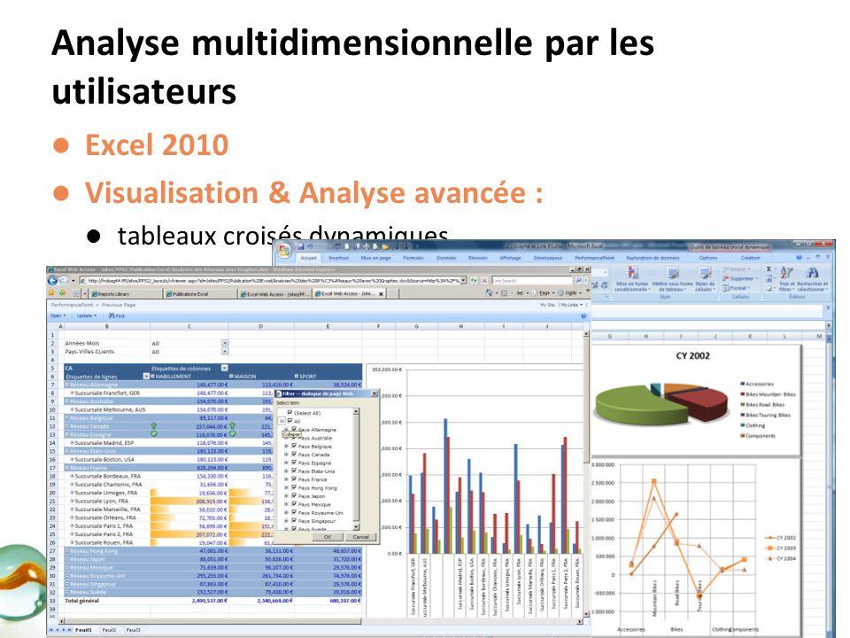 Excel 2010 Visualisation & Analyse avancée : tableaux croisés dynamiques Graphiques, fonctionnalités avancées Diffusion dans un portail Client léger :