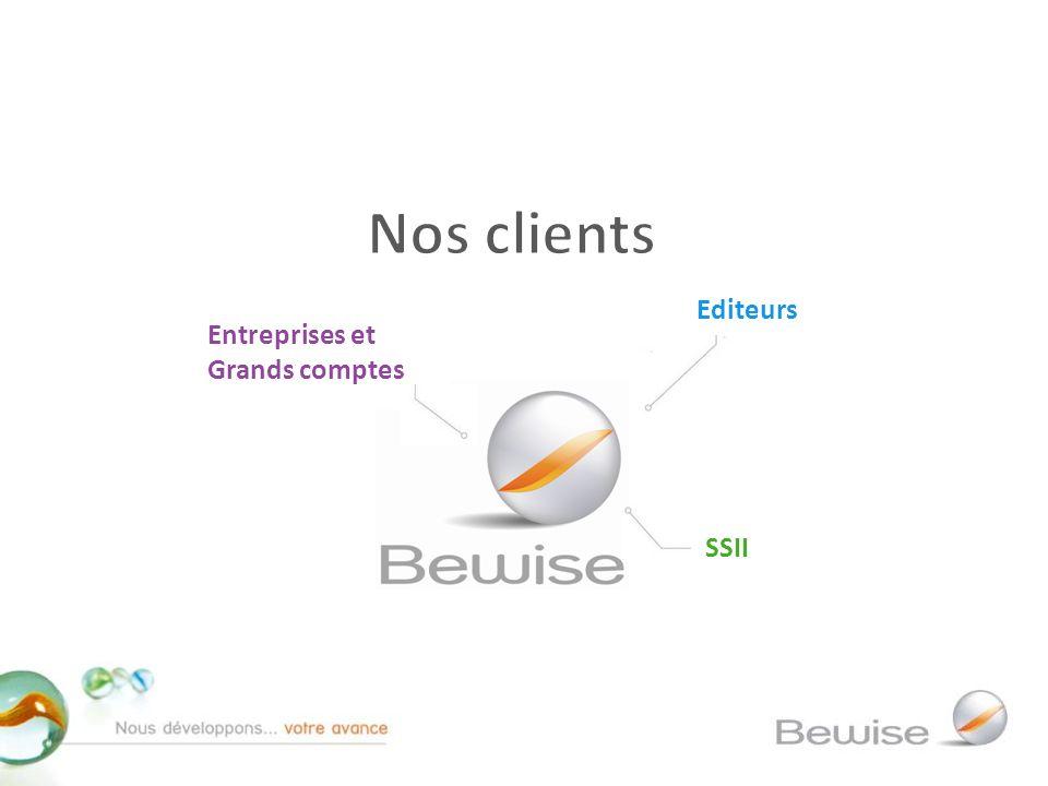 SSII Entreprises et Grands comptes Editeurs