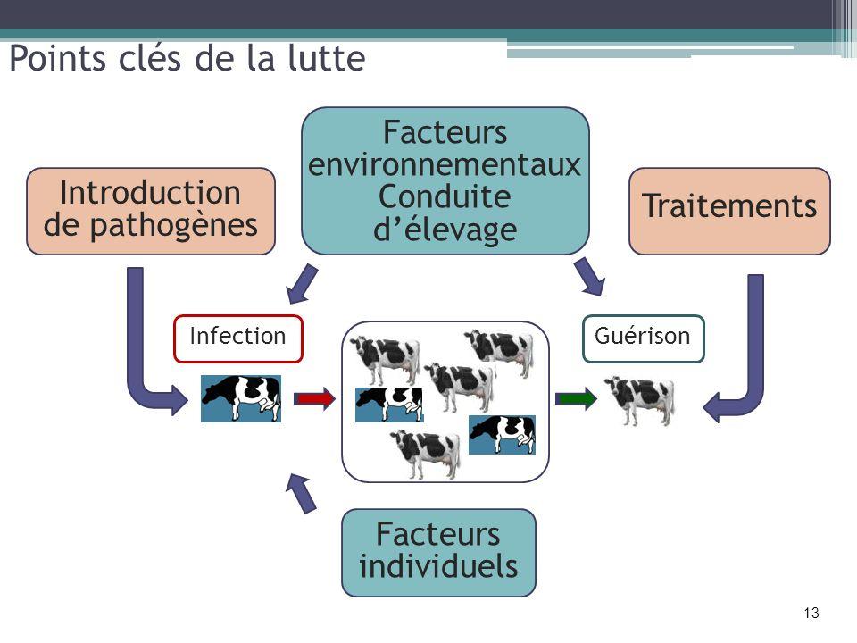 Points clés de la lutte Introduction de pathogènes Facteurs environnementaux Conduite délevage Facteurs individuels Traitements GuérisonInfection 13