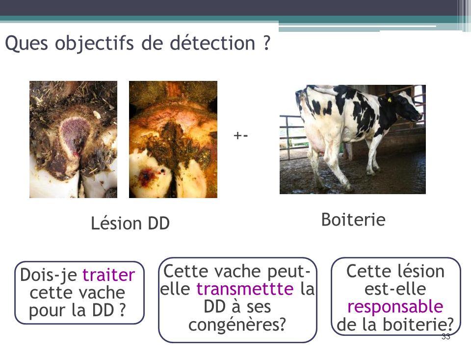 Ques objectifs de détection ? Cette vache peut- elle transmettte la DD à ses congénères? Cette lésion est-elle responsable de la boiterie? Dois-je tra
