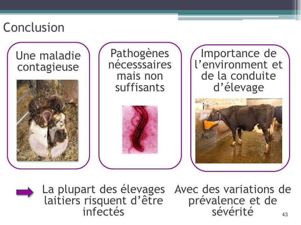 Conclusion Pathogènes nécesssaires mais non suffisants Importance de lenvironment et de la conduite délevage 43 Une maladie contagieuse La plupart des