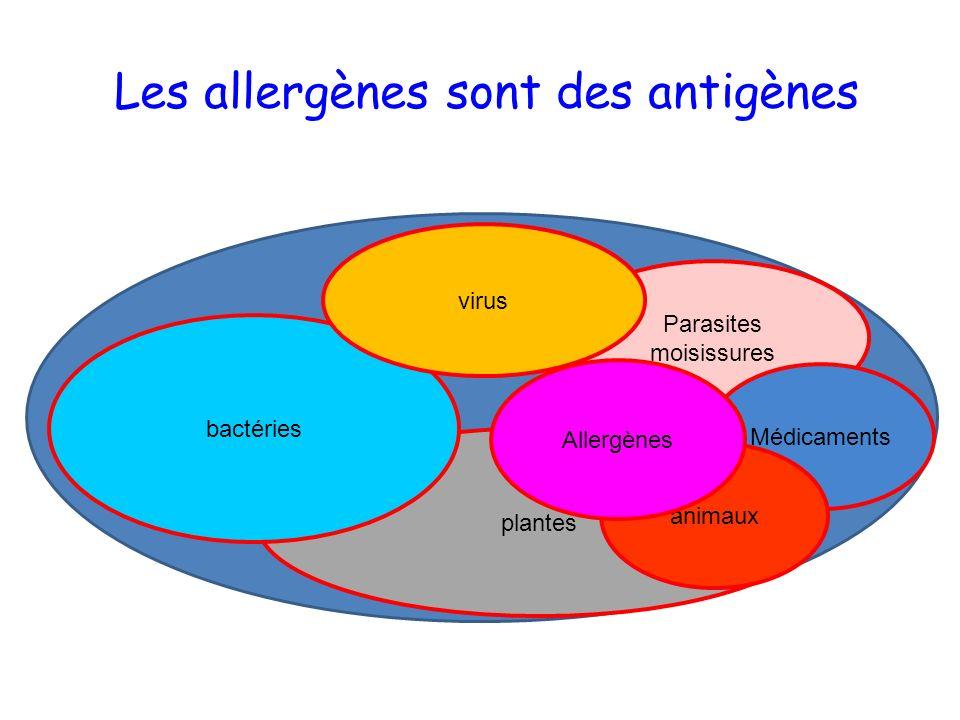 Les allergènes sont des antigènes Parasites moisissures plantes bactéries Médicaments virus animaux Allergènes