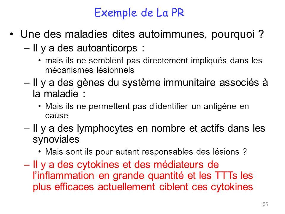 Exemple de La PR Une des maladies dites autoimmunes, pourquoi .