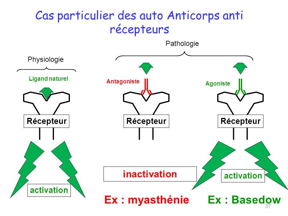 Cas particulier des auto Anticorps anti récepteurs 57 Récepteur activation inactivation Antagoniste Agoniste Ex : myasthénieEx : Basedow Ligand naturel Physiologie Pathologie