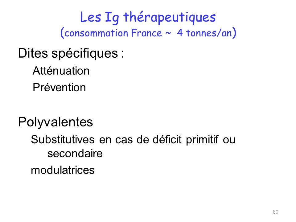 Les Ig thérapeutiques ( consommation France ~ 4 tonnes/an ) Dites spécifiques : Atténuation Prévention Polyvalentes Substitutives en cas de déficit primitif ou secondaire modulatrices 80