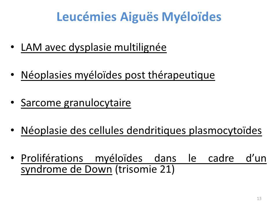 Leucémies Aiguës Myéloïdes LAM avec dysplasie multilignée Néoplasies myéloïdes post thérapeutique Sarcome granulocytaire Néoplasie des cellules dendritiques plasmocytoïdes Proliférations myéloïdes dans le cadre dun syndrome de Down (trisomie 21) 13