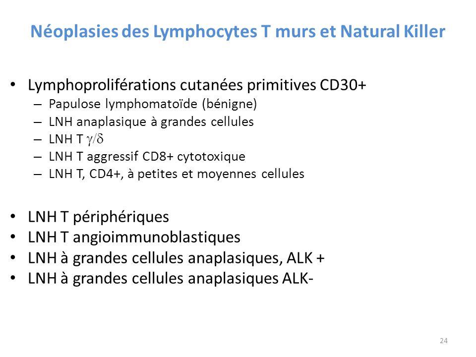 Néoplasies des Lymphocytes T murs et Natural Killer Lymphoproliférations cutanées primitives CD30+ – Papulose lymphomatoïde (bénigne) – LNH anaplasique à grandes cellules – LNH T – LNH T aggressif CD8+ cytotoxique – LNH T, CD4+, à petites et moyennes cellules LNH T périphériques LNH T angioimmunoblastiques LNH à grandes cellules anaplasiques, ALK + LNH à grandes cellules anaplasiques ALK- 24
