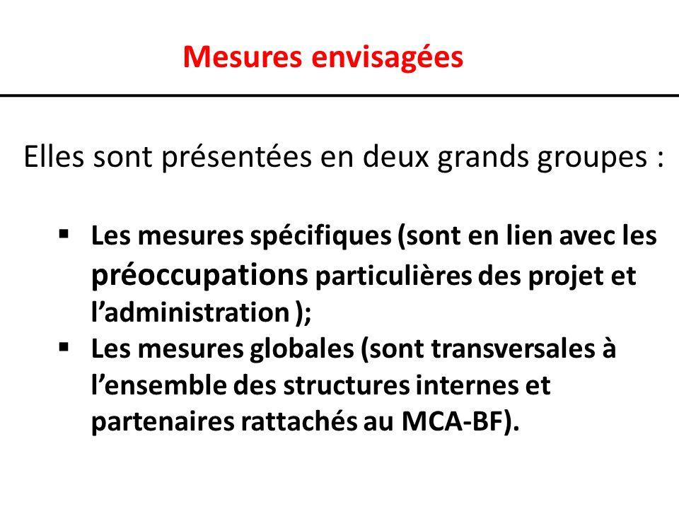 Mesures envisagées Elles sont présentées en deux grands groupes : Les mesures spécifiques (sont en lien avec les préoccupations particulières des projet et ladministration ); Les mesures globales (sont transversales à lensemble des structures internes et partenaires rattachés au MCA-BF).