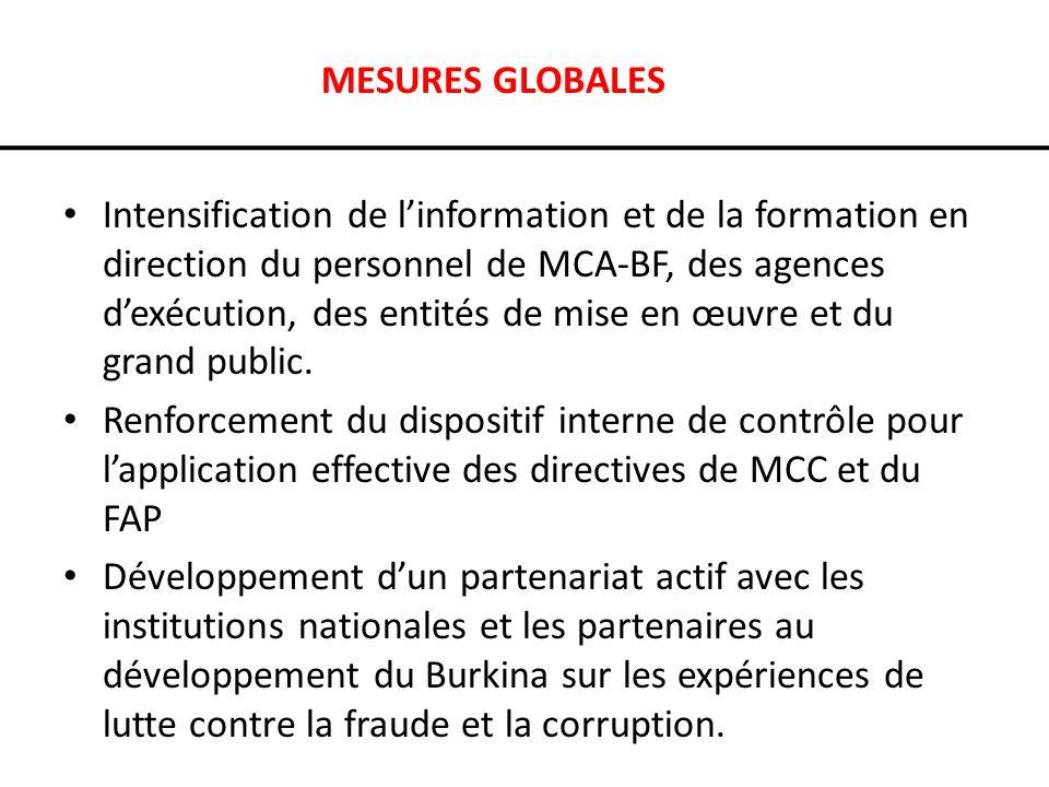 MESURES GLOBALES Intensification de linformation et de la formation en direction du personnel de MCA-BF, des agences dexécution, des entités de mise en œuvre et du grand public.