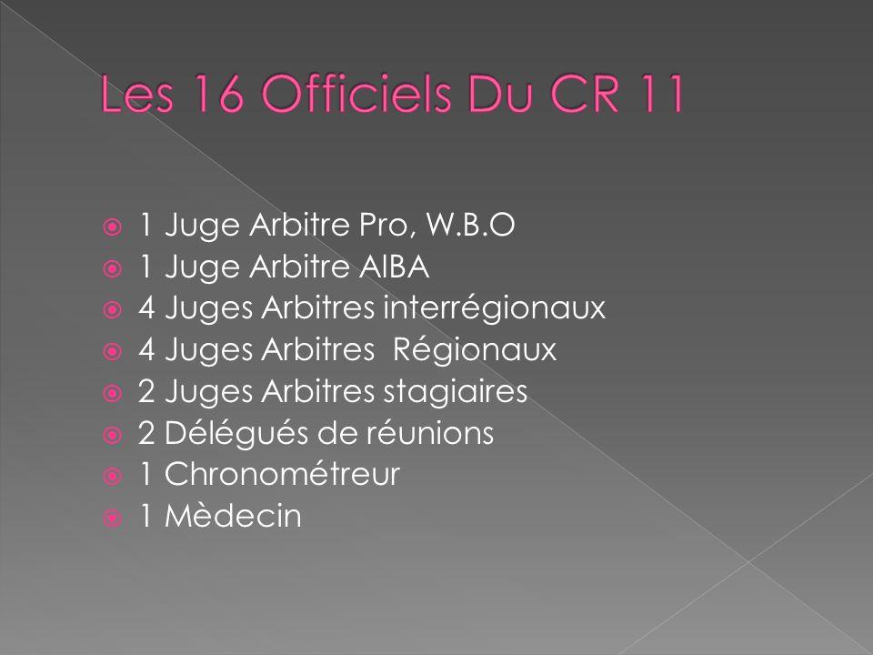 1 Juge Arbitre Pro, W.B.O 1 Juge Arbitre AIBA 4 Juges Arbitres interrégionaux 4 Juges Arbitres Régionaux 2 Juges Arbitres stagiaires 2 Délégués de réunions 1 Chronométreur 1 Mèdecin