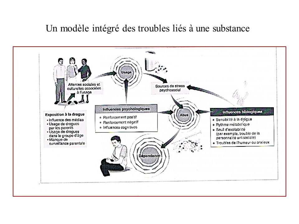 Un modèle intégré des troubles liés à une substance