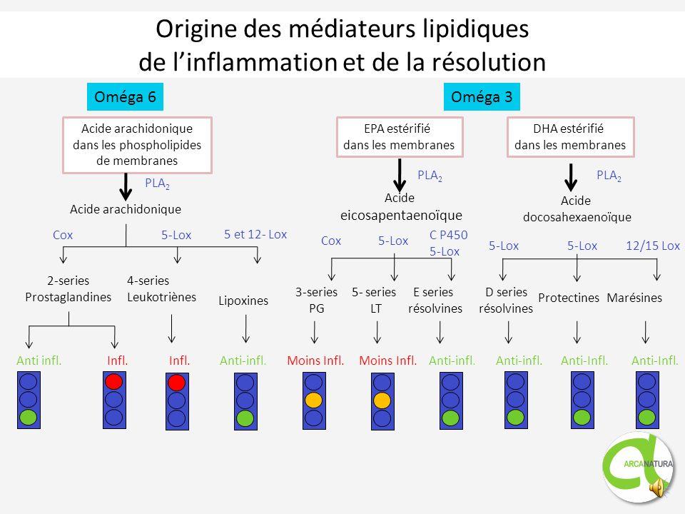 Médiateurs lipidiques de la résolution 1.Travaux du Pr. Charles Serhan à Harvard 2.Linflammation un phénomène dynamique Inflammation chronique Résolut