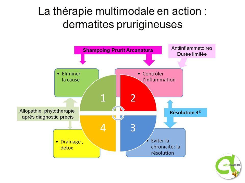 Dermatites prurigineuses : produits Arcanatura Shampooing Prurit Arcanatura à base dextraits de plantes á activité anti- inflammatoires, de tensio-act