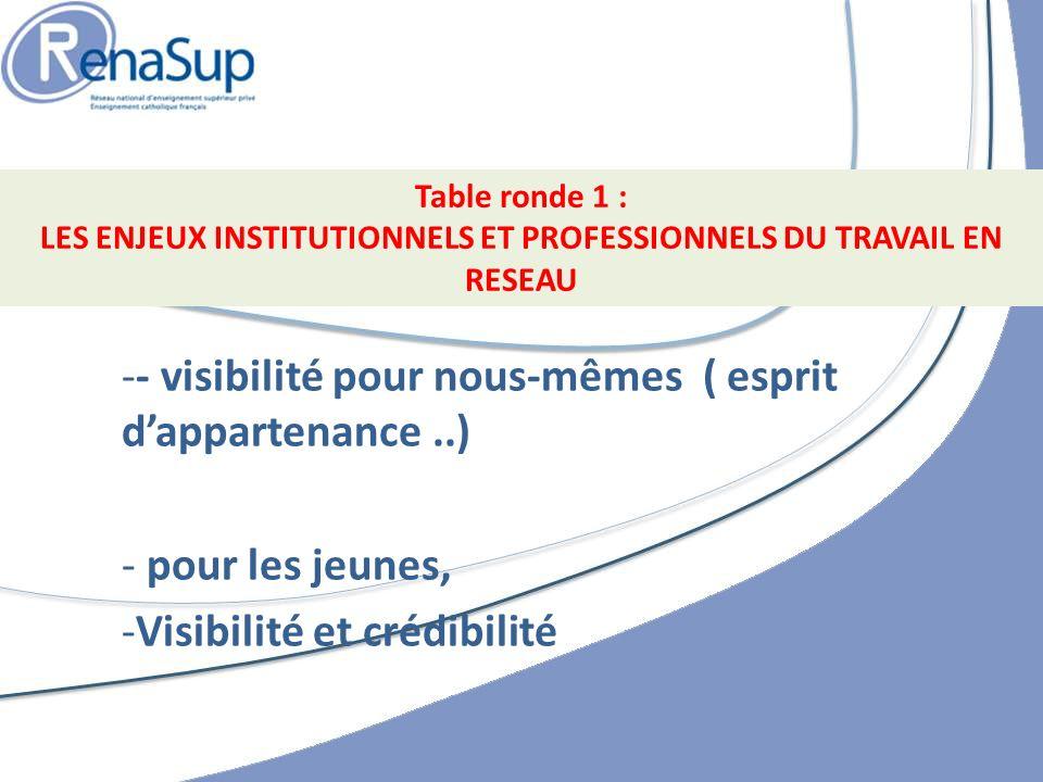 -- visibilité pour nous-mêmes ( esprit dappartenance..) - pour les jeunes, -Visibilité et crédibilité Table ronde 1 : LES ENJEUX INSTITUTIONNELS ET PROFESSIONNELS DU TRAVAIL EN RESEAU