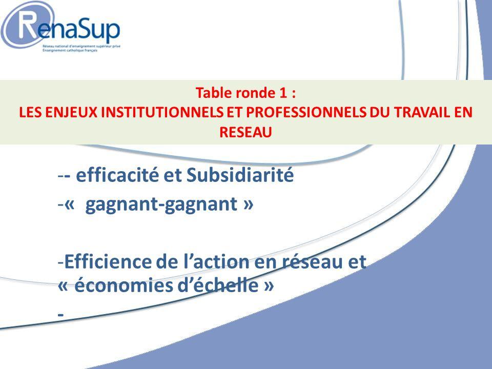 -- efficacité et Subsidiarité -« gagnant-gagnant » -Efficience de laction en réseau et « économies déchelle » - Table ronde 1 : LES ENJEUX INSTITUTIONNELS ET PROFESSIONNELS DU TRAVAIL EN RESEAU