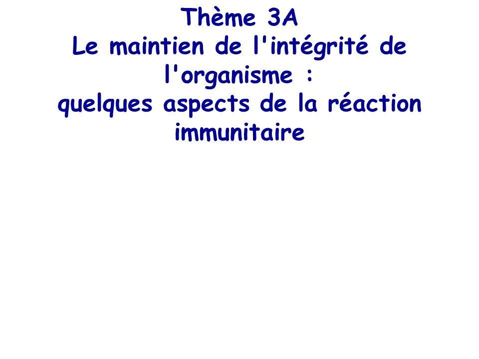 Thème 3A Le maintien de l'intégrité de l'organisme : quelques aspects de la réaction immunitaire