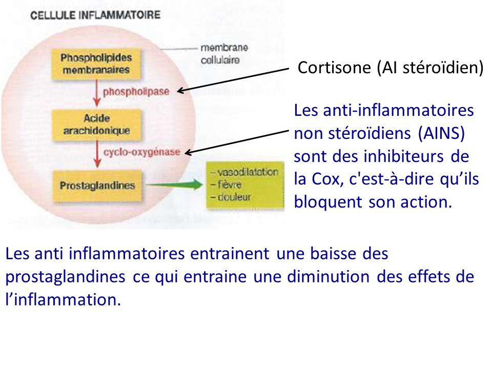 Les anti-inflammatoires non stéroïdiens (AINS) sont des inhibiteurs de la Cox, c'est-à-dire quils bloquent son action. Les anti inflammatoires entrain